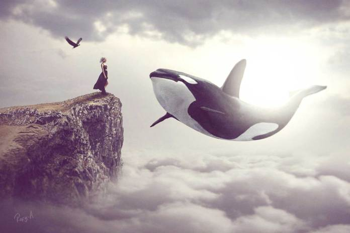 whale-in-the-sky-photo-manipulation-surreal-art