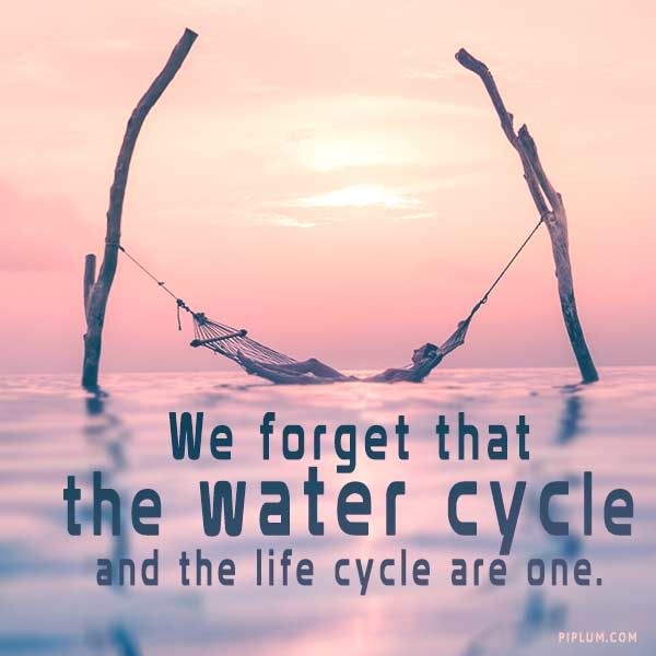 Inspirational-quote-about-water-We-forget-that-the-water-cycle-and-the-life-cycle-are-one