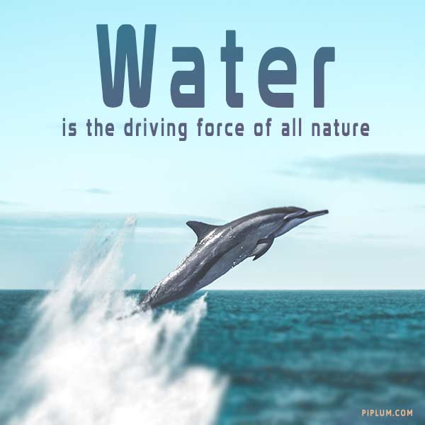 Water-is-the-driving-force-of-all-nature-an-inspirational-quote-for-oceans-and-seas