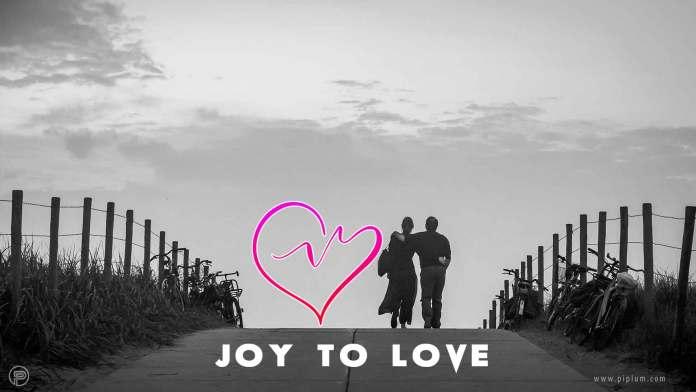 Joy-To-Love-true-quote