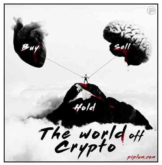 The-funny-and-sad-reality-of-cryptocurrency-Buy-Sell-Or-Hold