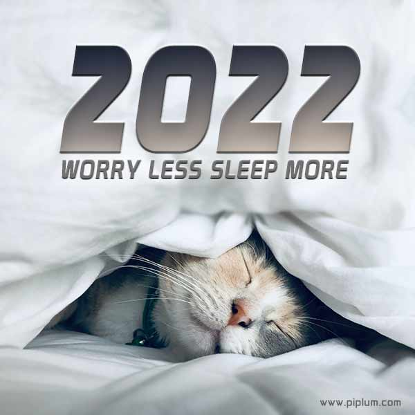 cat-in-bed-Worry-less-sleep-more-Cozy-2022-quote