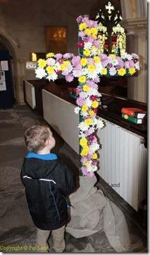 flower_cross