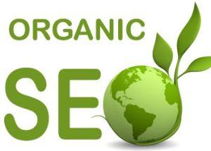 defining-organic-seo