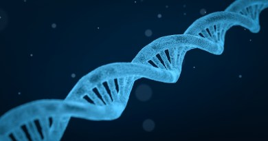 DNA, SUPER FOOD E MEDICINA PREVENTIVA