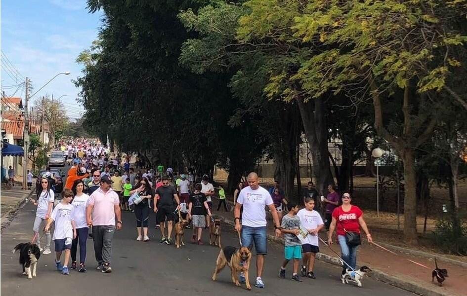 Colégio de Piracicaba realiza 6ª Cãominhada no próximo sábado (23) - PIRANOT