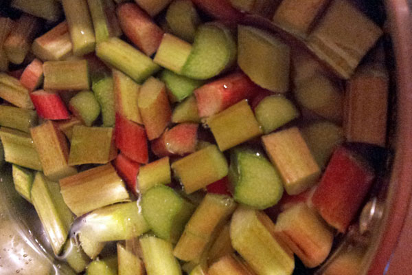 cooking-rhubarb