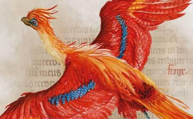 Harry Potter A History Of Magic Exhibit Is Now Online