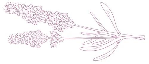 Pisane kwiatami