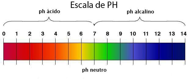 Cómo medir el pH en las piscinas escala