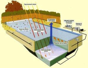 piscines zodiac enterree ou hors sol