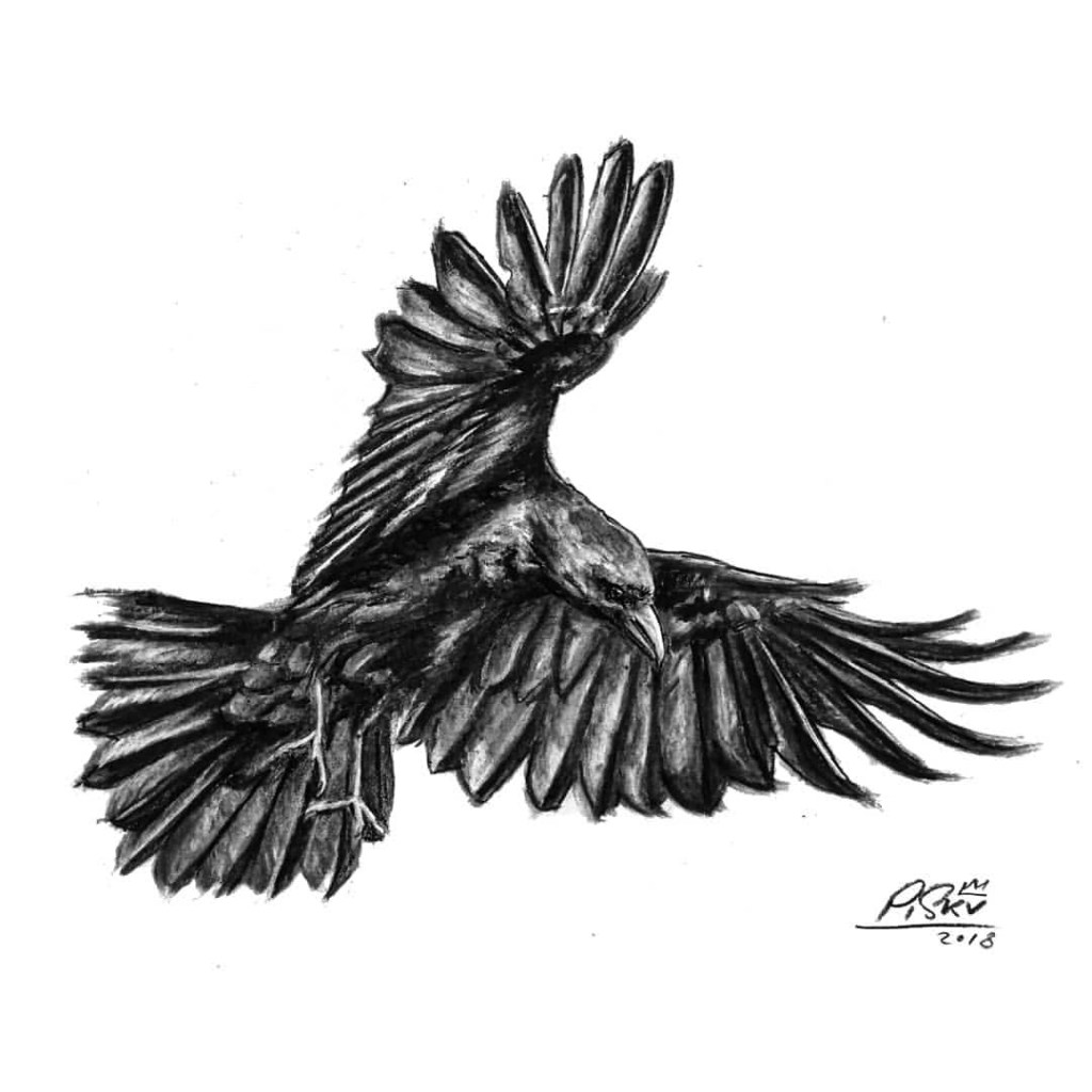 """The Crow"" by Piskv_Charcoal on paper_21x29cm_2018"