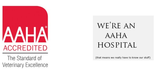 We're An AAHA Hospital