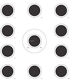TargDots Auto Advance Remote Target System