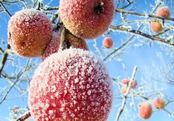 Piękne latem, urokliwe zimą