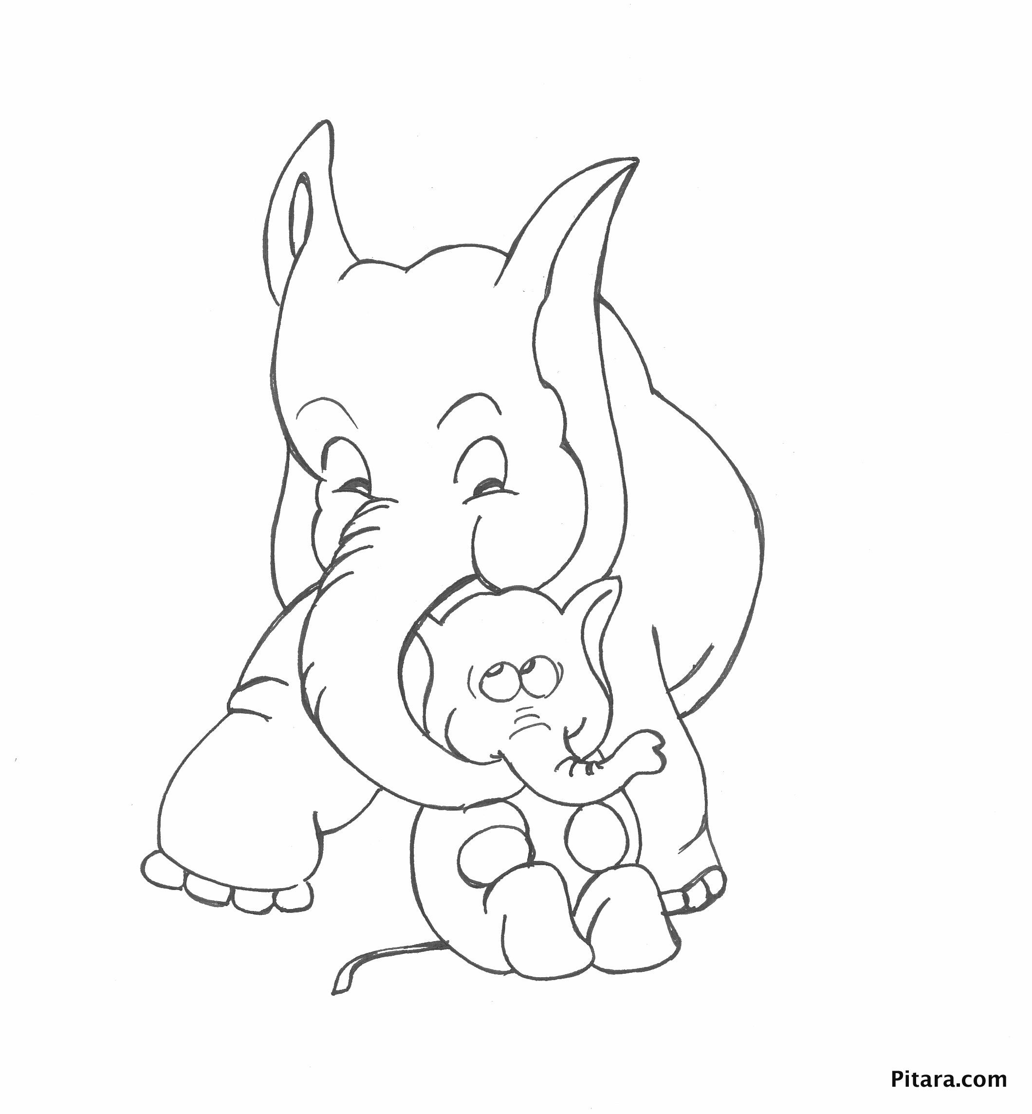 Elephant – Mother & baby