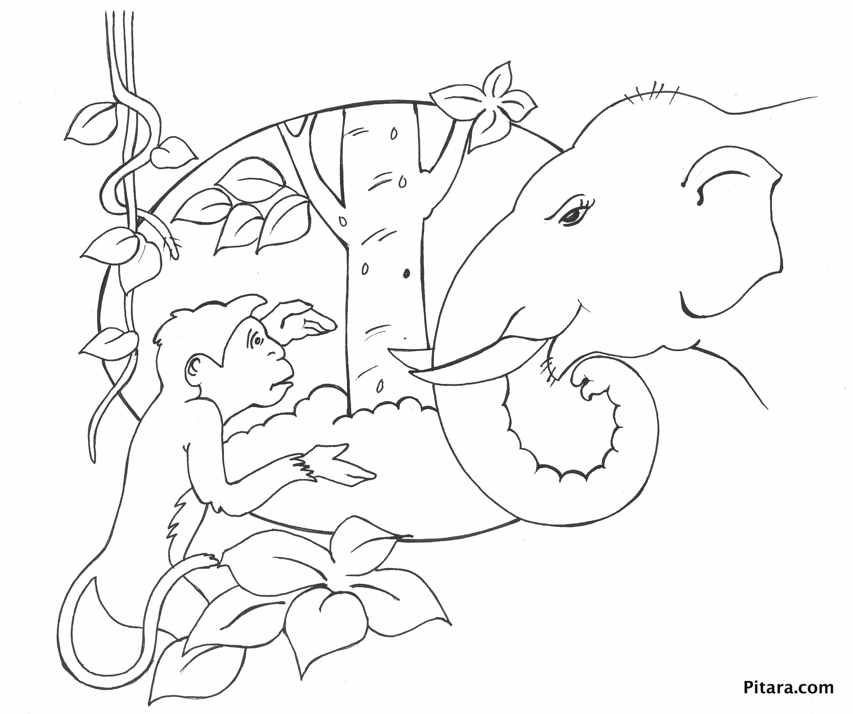 Monkey & elephant – Coloring page