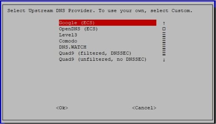 Pi-Hole DNS Settings