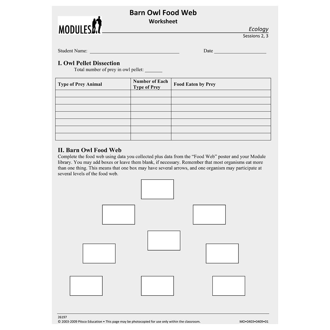 Barn Owl Food Web Worksheet Ages 12 Add To Wishlist Barn