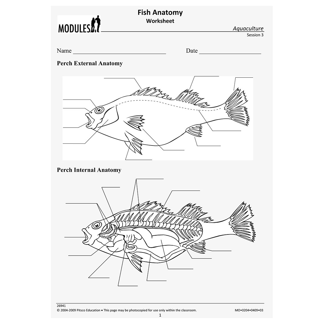 perch internal anatomy diagram electron dot of nh3 printables fish worksheet mywcct thousands