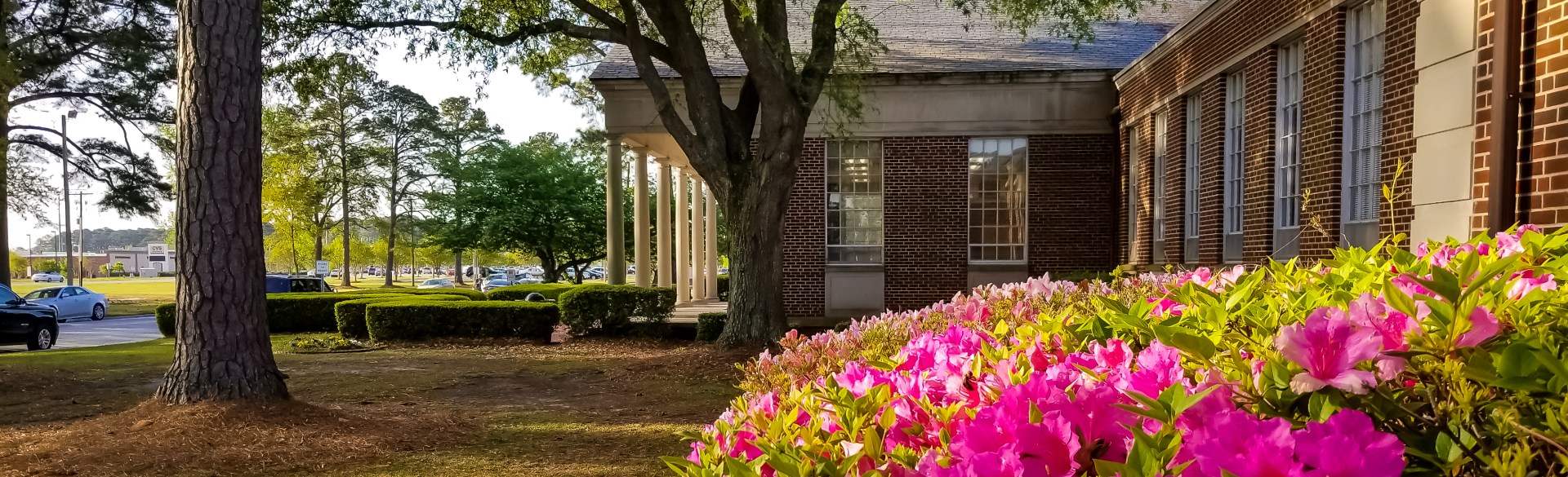 Azaleas bloom in front of the Vernon E. White Building.