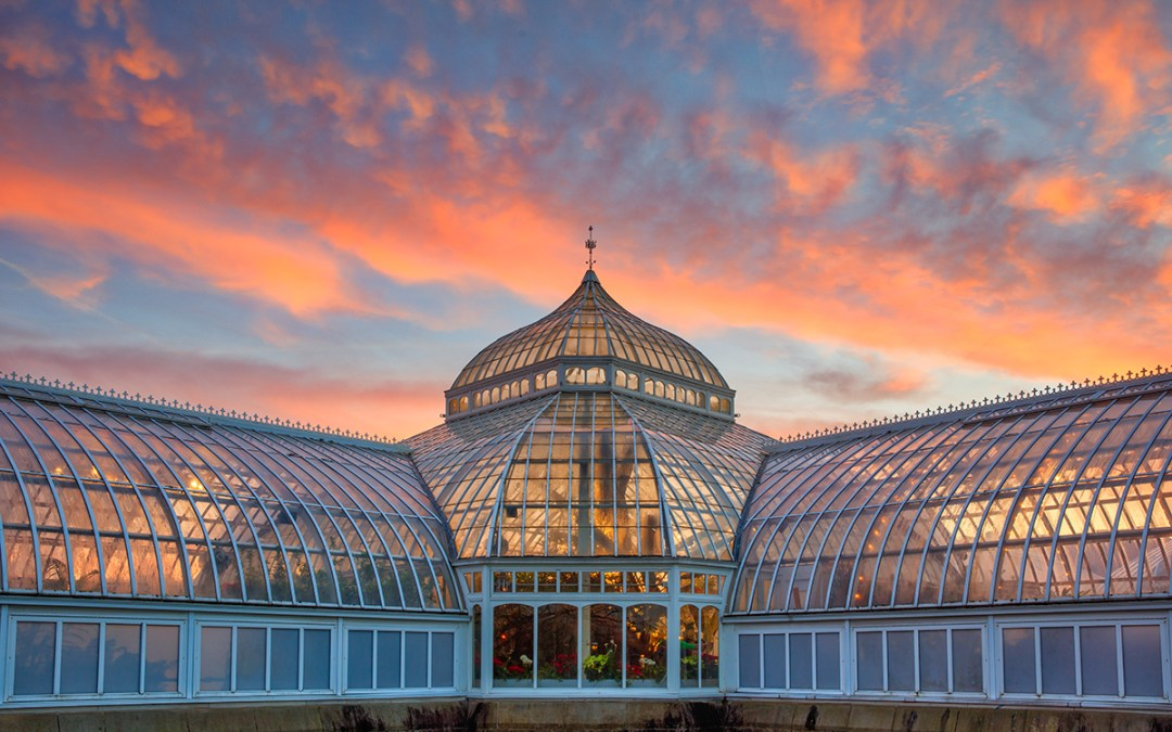 A History of Phipps Conservatory