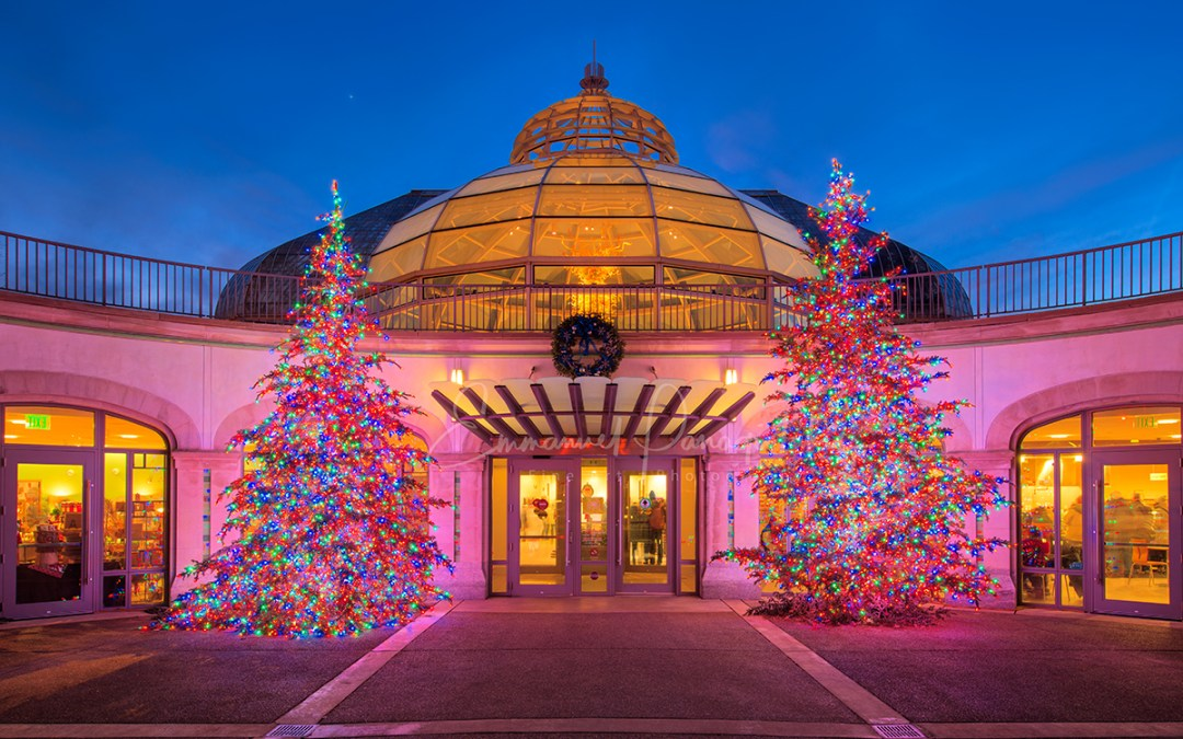 Pittsburgh's Spectacular Holiday Magic: Let It Glow! is Now Open at Phipps Conservatory, Bigger and Brighter Than Ever