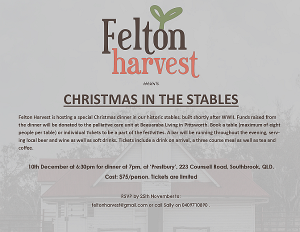 christmas-in-the-stables-1