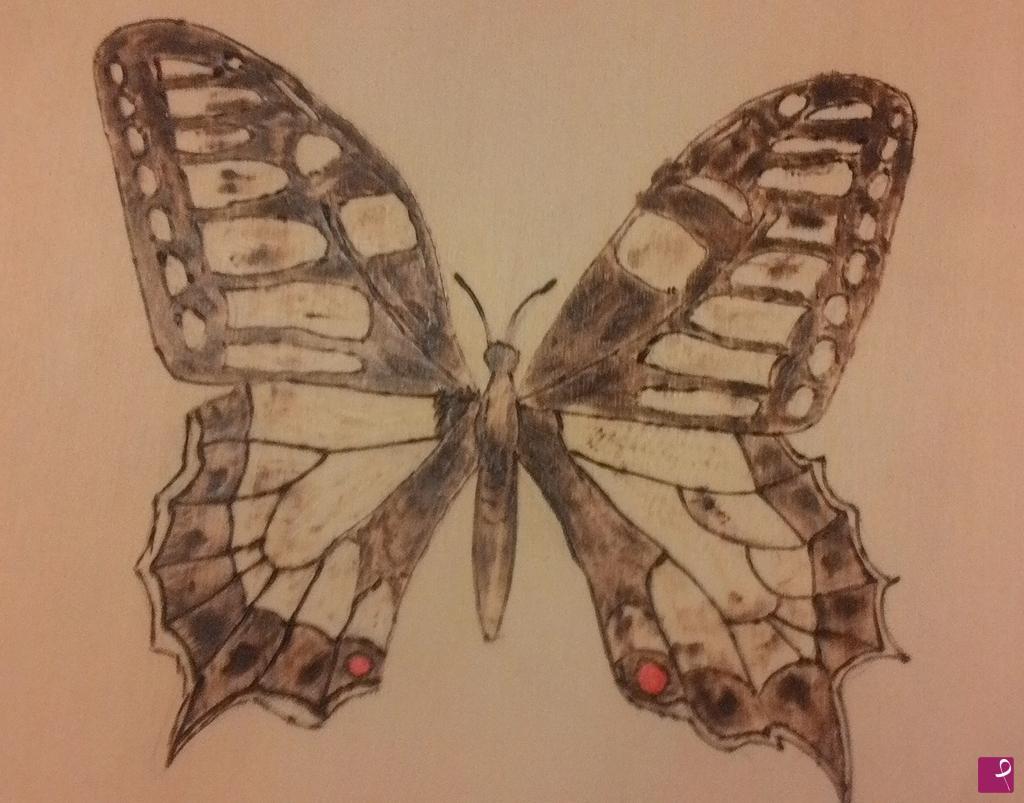 Vendita quadro  Pirografo farfalla idea regalo  Pini Pyro  PitturiAmo