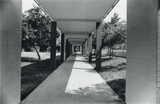 Walkway to the East of Sanborn Hall, undated