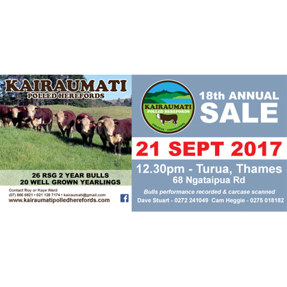 Kairaumati Hereford - 21 September 2017