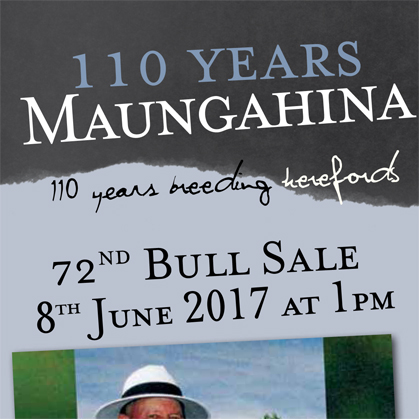 Maungahina Cattle - 8 June 2017