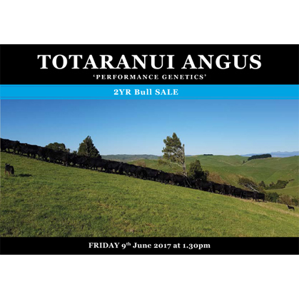 Totaranui Angus - 9 June 2017