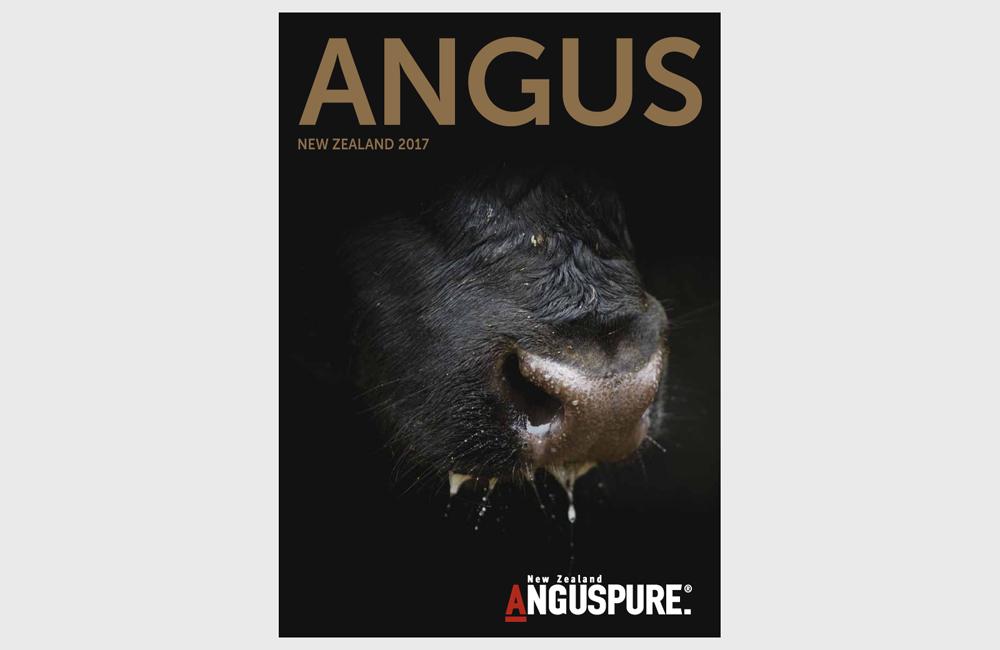 Angus Magazine