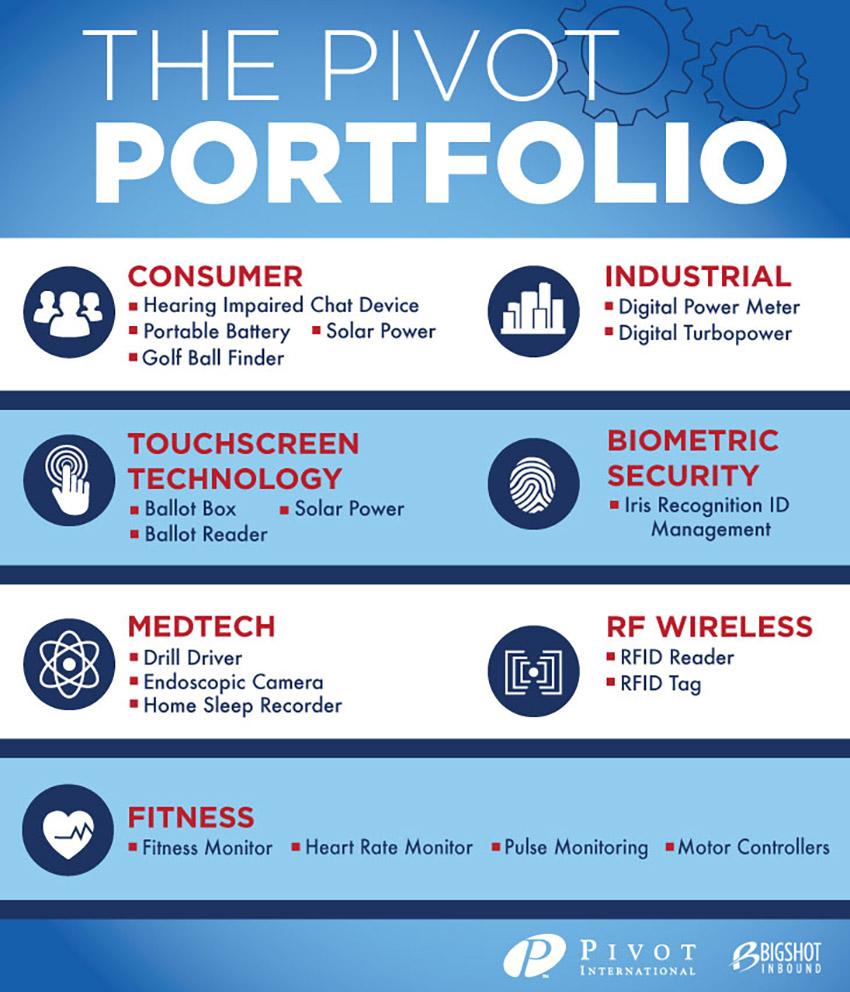 Pivot Portfolio Infographic