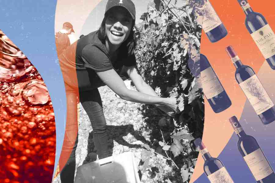 How Stories About Sangiovese Inspired a Wine Career