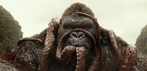 Kong takes a lunch break.