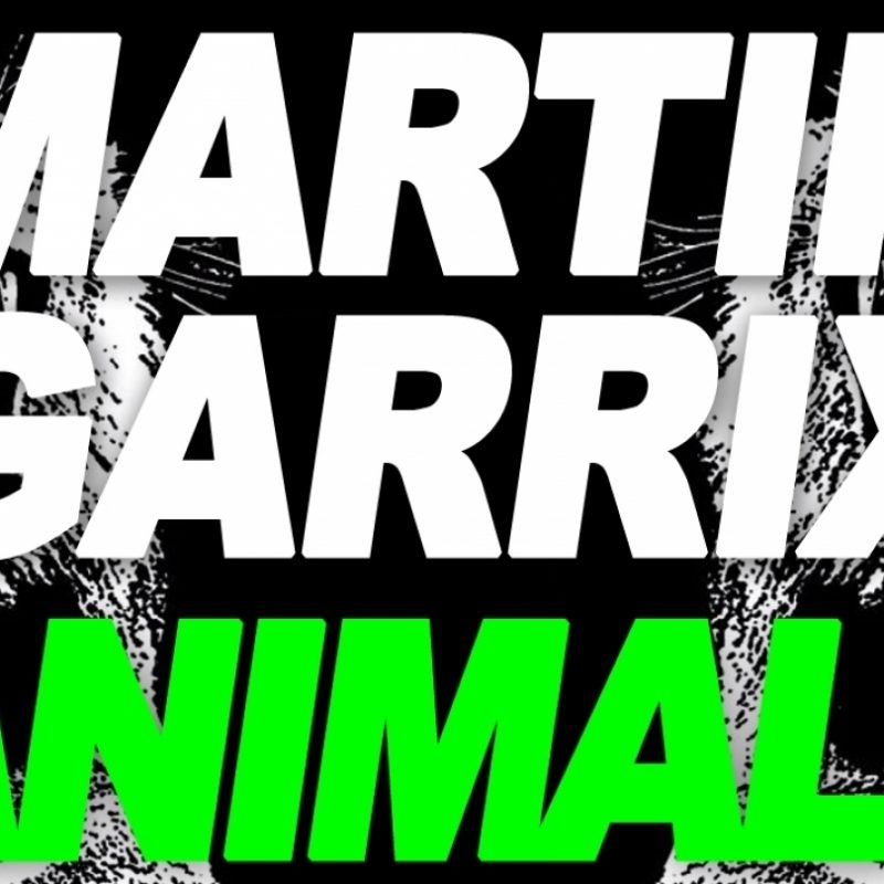Image of: Remix 10 Best Martin Garrix Animals Logo Full Hd 19201080 For Pc Background 2018 Free Stmednet 10 Best Martin Garrix Animals Logo Full Hd 19201080 For Pc
