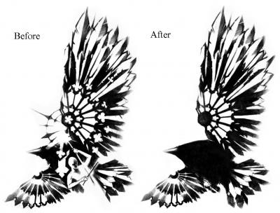 but the shading and the raven itself and had been wanting a raven tattoo