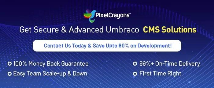 umbraco development services