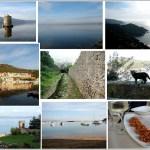 Monte Argentario: la Quiete della Macchia Mediterranea e del Mare d'Inverno