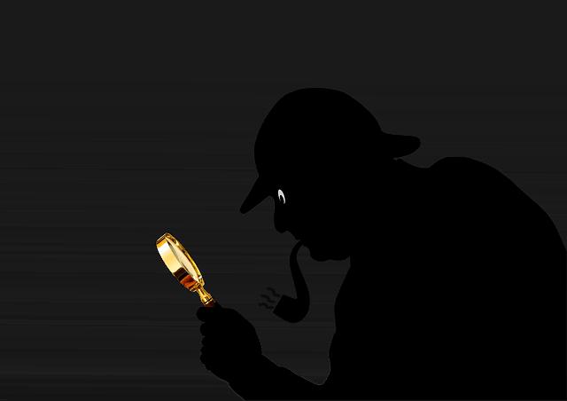 Ein Detektiv kann in bestimmten Fällen eine große Hilfe sein