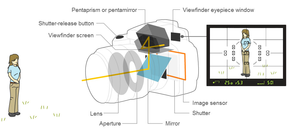 basic parts of dslr camera and their functions iPhone Camera Parts Diagram