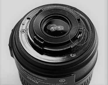 Macro Photography on a Budget