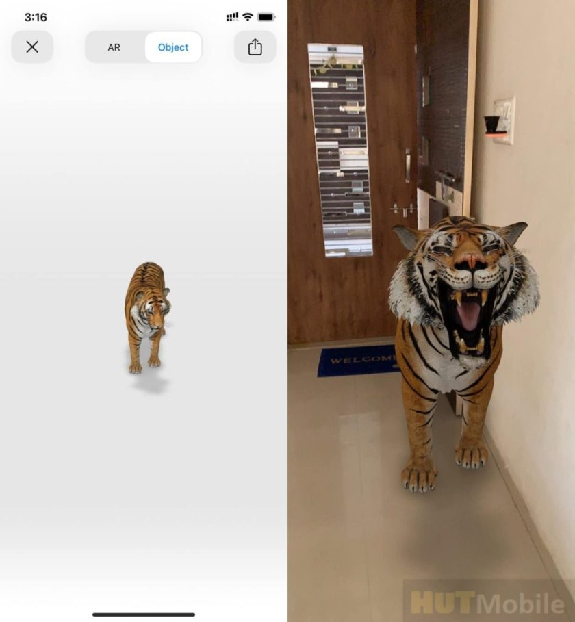 Kill Your Time With Google 3D Animal Animation In Lock-Down
