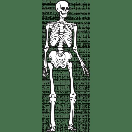 Spook Skeleton Black Outline graphic by Brooke Gazarek