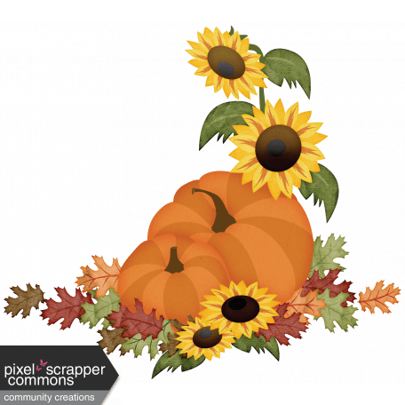 sunflowers and pumpkins graphic