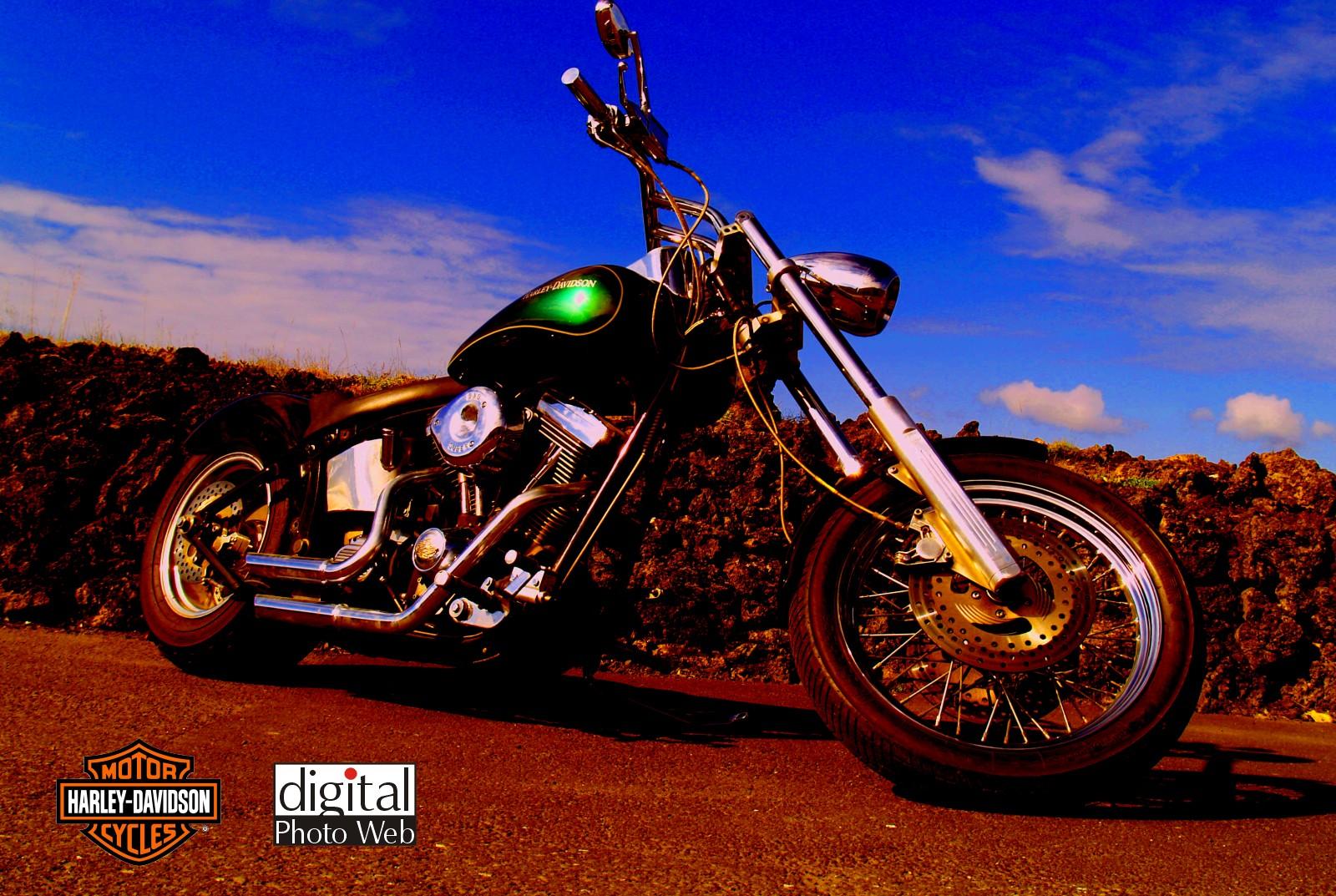 Anime Girl On Bike Wallpaper Harley Davidson Motorcycle Pixelstalk Net