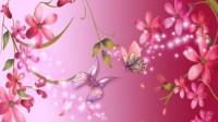 Bright Backgrounds Free Download | PixelsTalk.Net