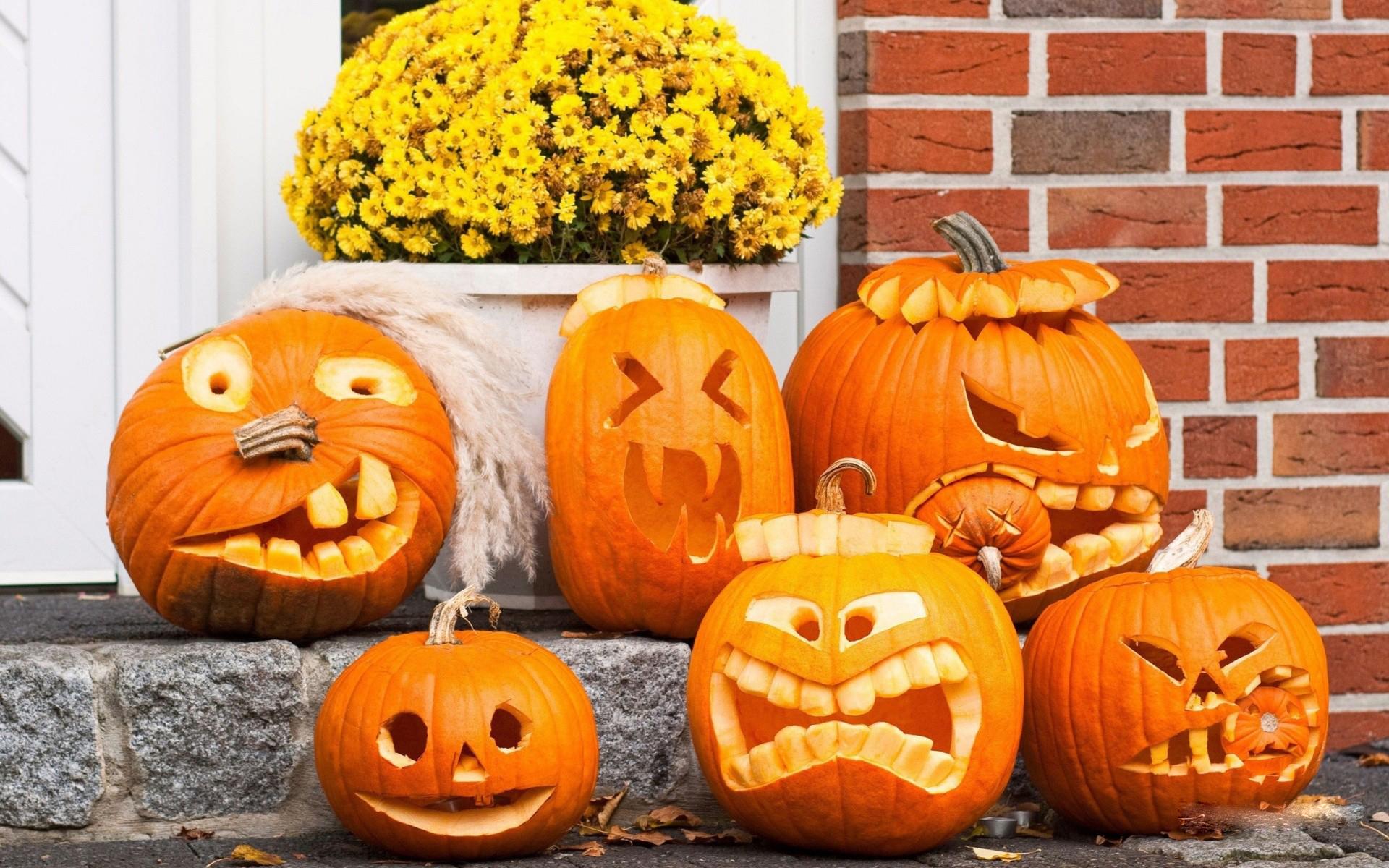 Fall Leaves And Pumpkins Wallpaper Free Hd Pumpkin Wallpapers Pixelstalk Net
